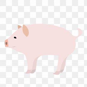 Pig - Domestic Pig Computer Mouse Clip Art Snout PNG