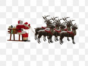 Santa Claus - Santa Claus's Reindeer Santa Claus's Reindeer Mrs. Claus PNG