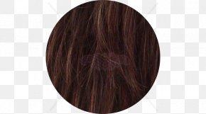 Light Brown Color - Hair Coloring Brown Caramel Color Long Hair PNG