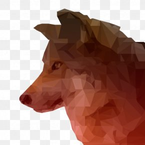 Low Polygon - Gray Wolf Low Poly Animal Digital Art Canidae PNG