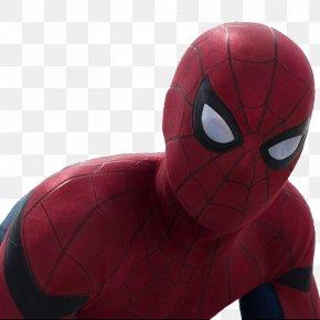 Spider-Man - Spider-Man Superhero PNG