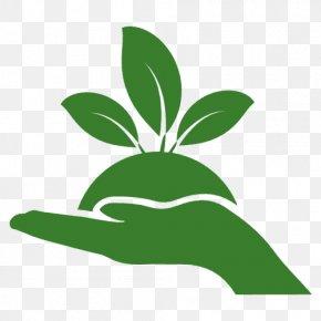 Natural Environment - Waste Management Recycling Natural Environment PNG