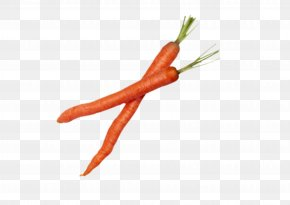 Vegetable Carrot - Chili Pepper Vegetable Cooking Culinary Art PNG