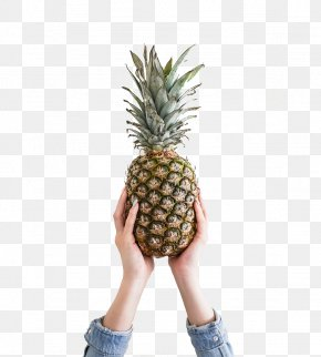 Hands Hold Pineapple - Pineapple Fruit Theme Cherry Wallpaper PNG