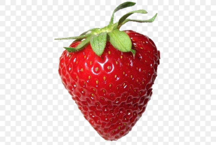 Strawberry Food Trypophobia Recipe Png 500x552px Strawberry