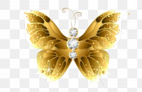 Gold Flower - Butterfly Net Insect Gold Clip Art PNG