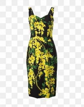 Dress - Dress Dolce & Gabbana Clothing Milan Fashion Week PNG