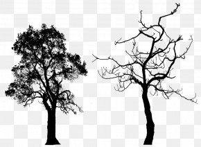 Free Tree Silhouette - Tree Silhouette Clip Art PNG