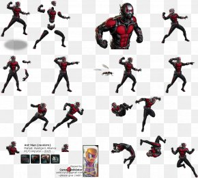 Ant-Man Pic - Marvel: Avengers Alliance Marvel Heroes 2016 Hank Pym Ant-Man Black Widow PNG
