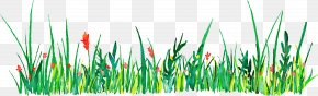 Green Grass Watercolor Decorative Pattern - Euclidean Vector Icon PNG