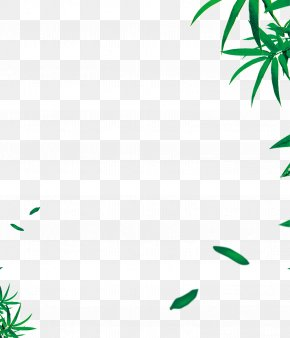 Green Bamboo Leaves Background - Leaf Angle Area Pattern PNG