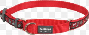 Red Collar - Dog Collar Dingo Martingale PNG