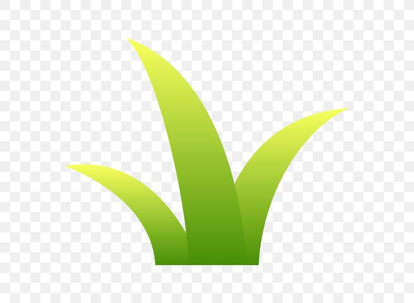 Leaf Logo Font Desktop Wallpaper Plant Stem, PNG, 600x600px, Leaf, Computer, Grass, Green, Logo Download Free