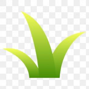 Leaf Logo Font Desktop Wallpaper Plant Stem PNG