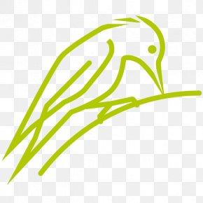 Leaf - Leaf Grasses Plant Stem Clip Art PNG
