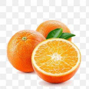 Bitter Orange Tangerine - Orange PNG