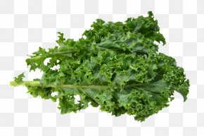 Kale - Leaf Vegetable Kale Nutrition Facts Label Food PNG