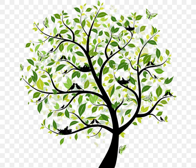 Tree Royalty-free Stock Photography Illustration, PNG, 658x702px, Tree, Branch, Drawing, Flora, Floral Design Download Free