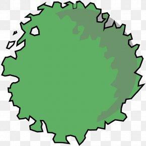 Tree Plan - Tree Leaf Circle Clip Art PNG
