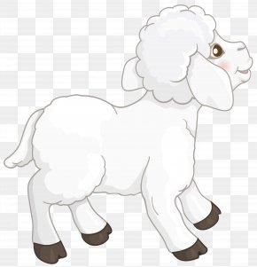 Transparent White Lamb Clipart Picture - Sheep Goat Clip Art PNG