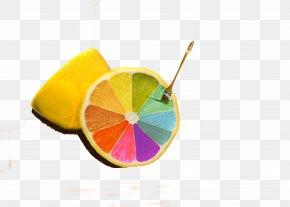 Lemon Paint Brushes - Web Development Creativity Innovation Business PNG