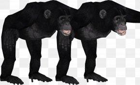Chimpanzee - Gorilla Common Chimpanzee Primate Zoo Tycoon 2 Animal PNG