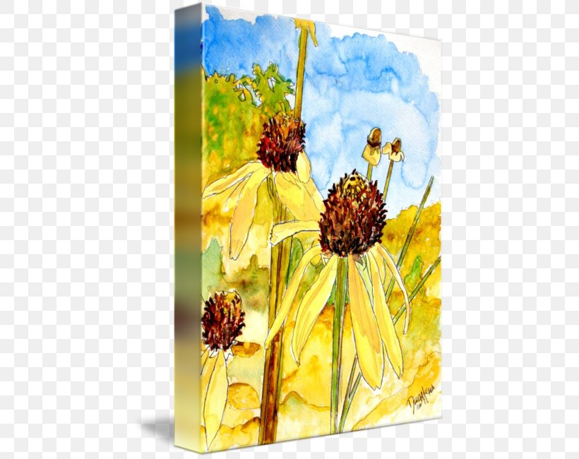 Watercolor Painting Yellow Coneflower Art, PNG, 442x650px, Painting, Abstract Art, Art, Canvas, Canvas Print Download Free