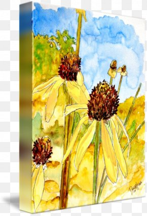 Watercolor Painting Yellow - Watercolor Painting Yellow Coneflower Art PNG