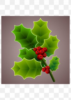 Floral - Christmas Common Holly PNG