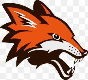 Fox Face Cliparts - Arctic Fox Red Fox Clip Art PNG