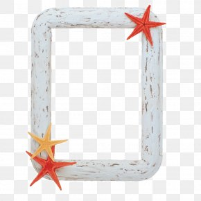 Starfish Frame - Picture Frame Computer File PNG