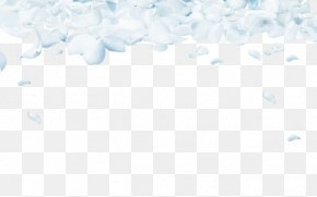 White Floral Background - Sky Pattern PNG