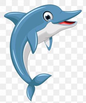 Cartoon Dolphin - Dolphin Euclidean Vector Clip Art PNG