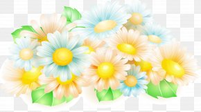 Gerbera Text Vector Background Material - Flower Stock Illustration Spring Clip Art PNG