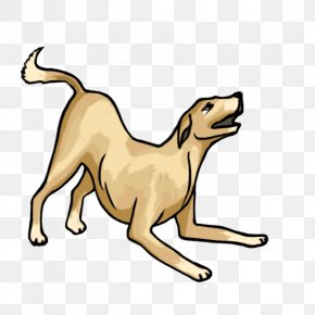 A Cartoon Dog - Boxer Dog Breed Drawing Cartoon Clip Art PNG