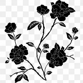 Black And White Roses Pictures - Rose Flower Black And White Clip Art PNG