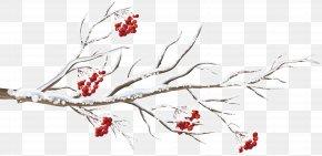 Winter Branch Clip Art Image - Diagram Computer Network Clip Art PNG