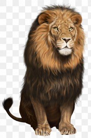 Lion Transparent Clip Art Image - Lion Cat Clip Art PNG