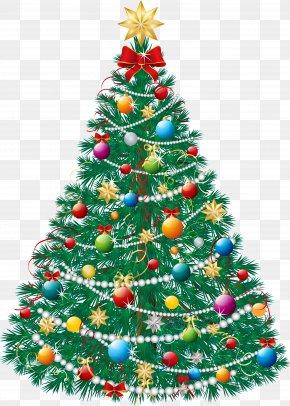 Christmas - Christmas Tree Gift Santa Claus PNG