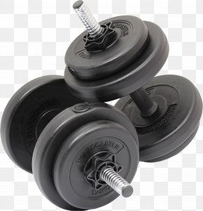 Hantel - Dumbbell Weight Training Physical Exercise Total Gym Fitness Centre PNG
