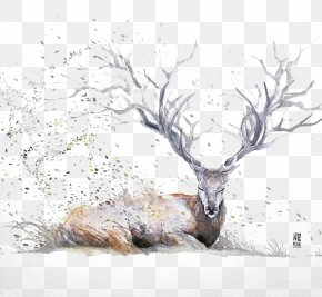 Ink Deer - Watercolor Painting Drawing Artist Illustration PNG