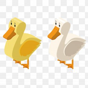 Vector Cute Ducks - Duck 3D Computer Graphics Illustration PNG