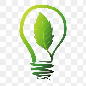 Energy And Environmental Protection - Natural Environment Energy Environmental Protection Apple PNG