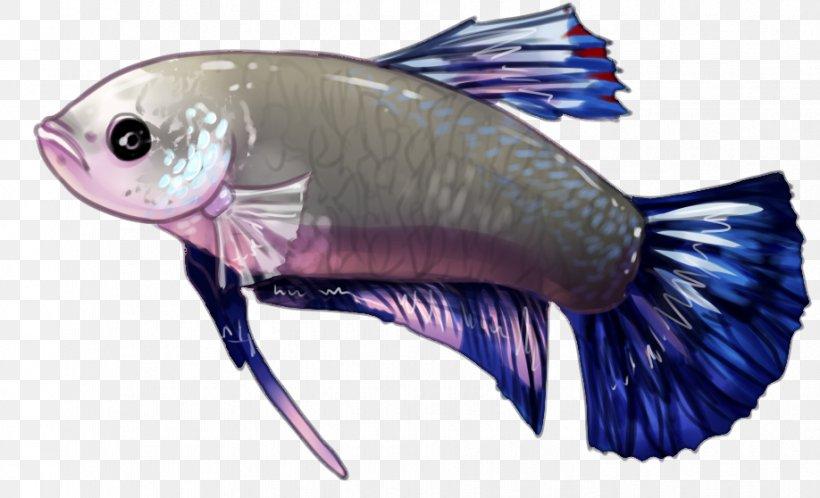 Organism Marine Biology DeviantArt Artist, PNG, 918x558px, Organism, Art, Artist, Biology, Community Download Free