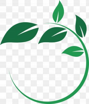 Circle - Main Street Wellness Studio Leaf Circle Plant Stem Logo PNG
