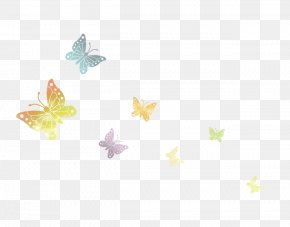 Colorful Butterfly - Yellow Petal Pattern PNG