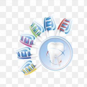 Toothbrush And Teeth - Human Tooth Euclidean Vector Teeth Cleaning PNG