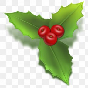 Holly - Common Holly Christmas Tree Clip Art PNG