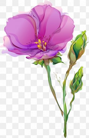 Spring Flowers - Cut Flowers Tulip Drawing Poppy PNG