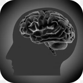 Brain - Brain Addiction Huntington's Disease Problem Gambling Cerebral Atrophy PNG